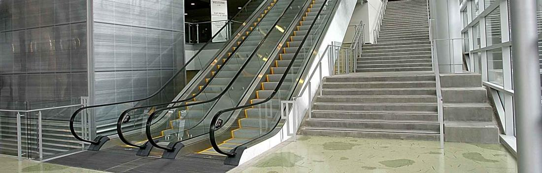 Up the Down Escalator: 5 Steps to Simplifying Your Weight Loss