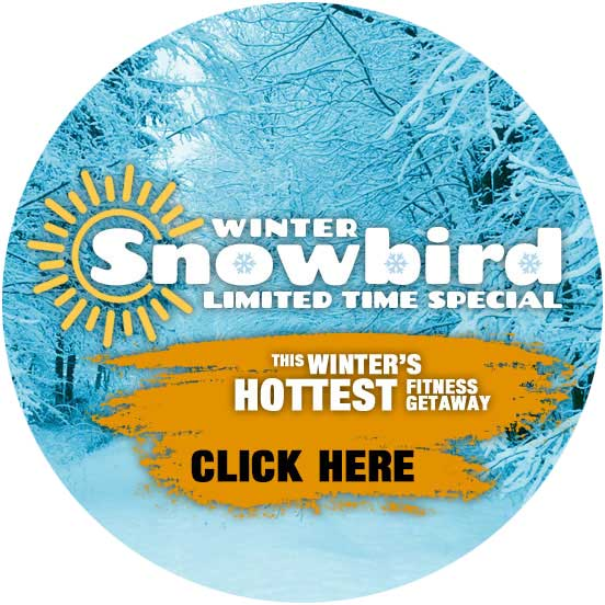 Limited time special rates for the winter.
